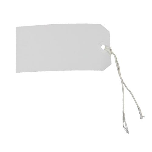 Fisher Clark Tags Strung 5CKL 120x60mm White Single Pk 75 8014