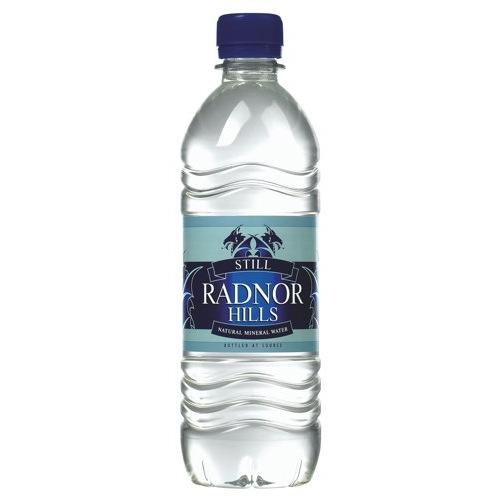Radnor Hills Still Mineral Water 500ml Packed 24 Ref A03098